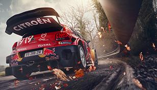 WRC-Glossary-7_308x176